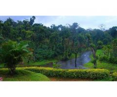 Mysore Coorg Tour Packages 1 Nights 2 Days